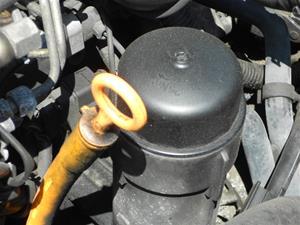 Oil Filter, Oil Drain, Oil Pan